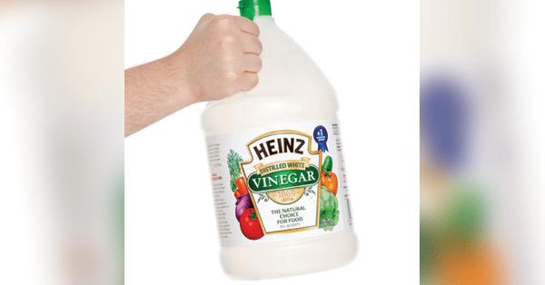 8 ways vinegar can save your garden this summer jesus daily for Vinegar in the garden